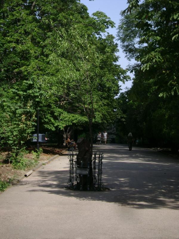 http://suntime.com.ua/img/content/sight/205/big_89761214000.jpg