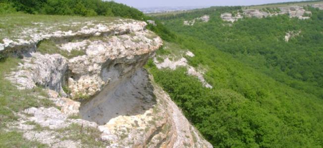 Таш Джарган Карта